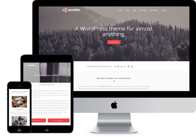 How To Design Premium WordPress Themes for free ( collections)