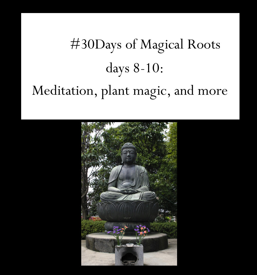 meditation and more, author Juli D. Revezzo. Pic by Brian Jeffery Beggerly