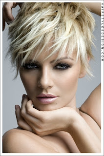 Hairstyles For Dummy Fall Short Hair Style