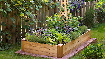The Mixture of Raised Bed Gardening Soil