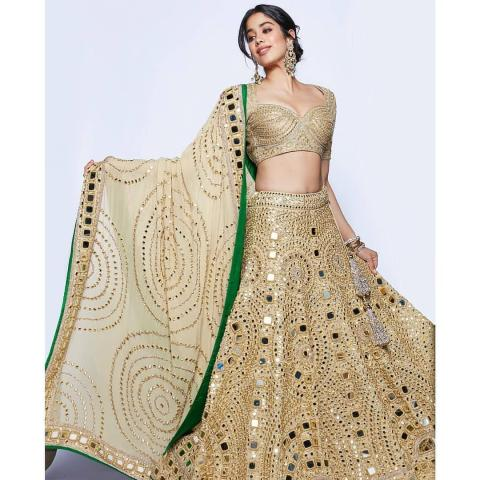 jhanvi kapoor  in backless blouse in ambani marriage