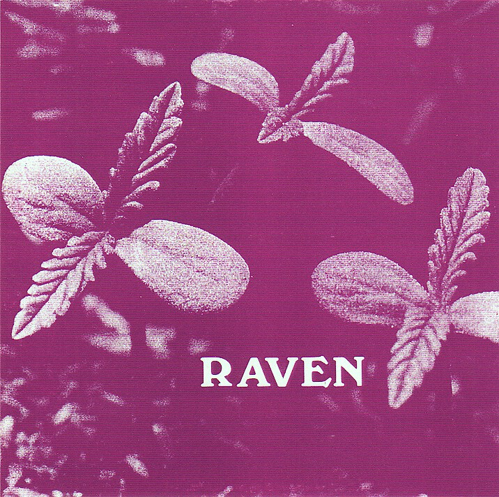 Raven - Back To Ohio Blues (1975, US, Heavybluesypsychrock
