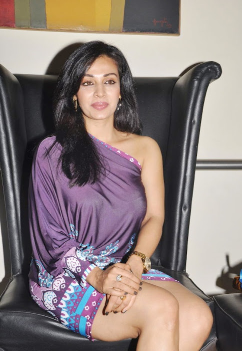 Asha Saini High Quality Spicy Photos 4