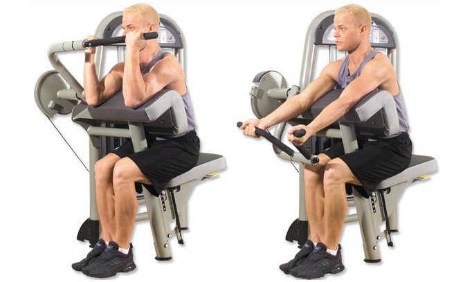 Image result for machine curl