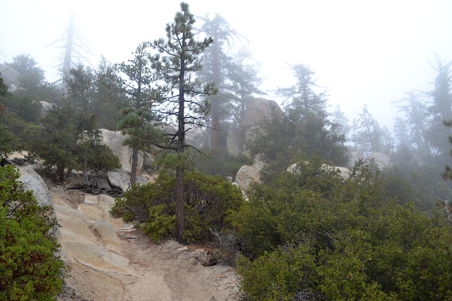 eroded trail surrounded by boulders and manzanita