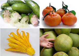 Πέντε εξωτικά εσπεριδοειδή με περίεργη εμφάνιση και ιδιαίτερη γεύση