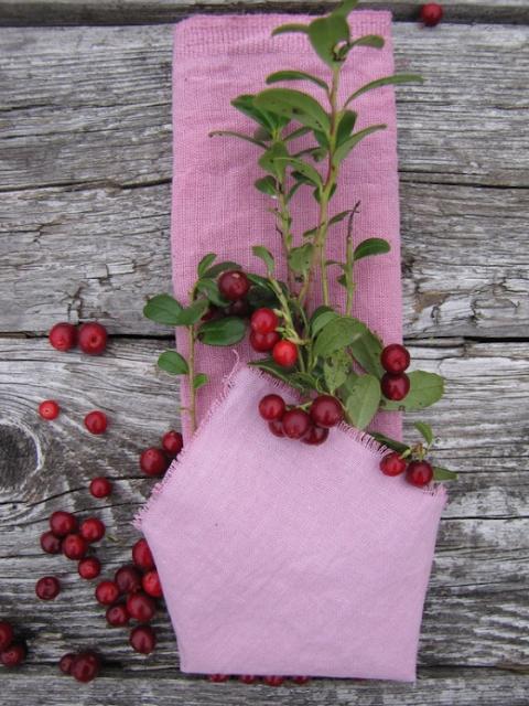 растительные красители для ткани