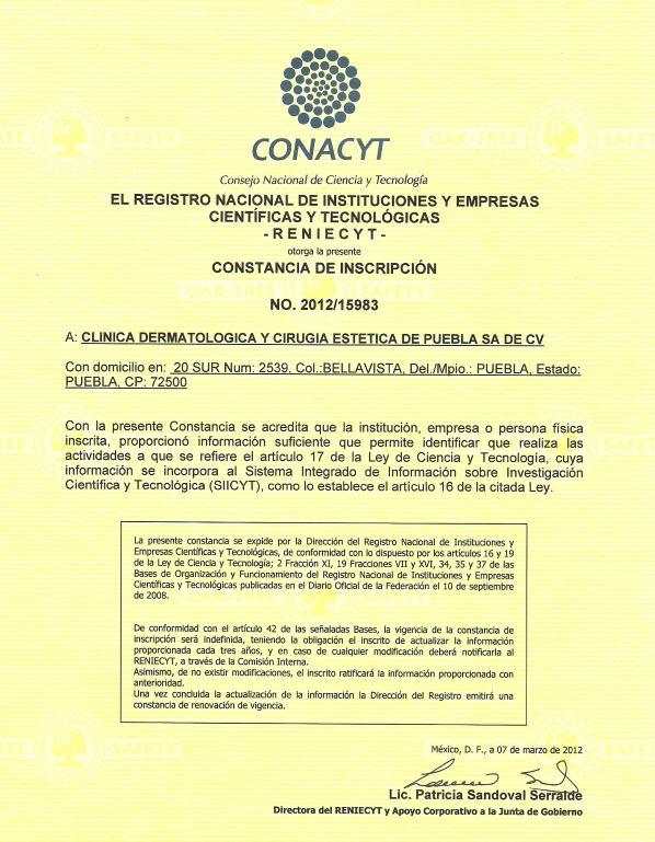 Excelente Junta Dermatólogo Certificado Adorno - Anatomía de Las ...