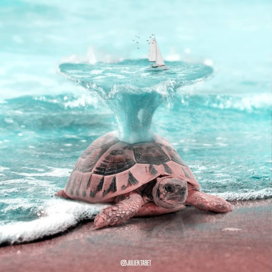 Julien Tabet arte foto-manipulações digitais photoshop surreais animais divertidos