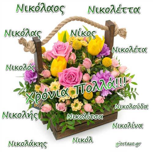 Νικόλαος, Νικόλας, Νίκος, Νικολός, Νικολής, Νικολάκης, Νικολέττα, Νικολούδα, Νικολίτσα, Νικολίνα, Νικολέτα, Νικόλ