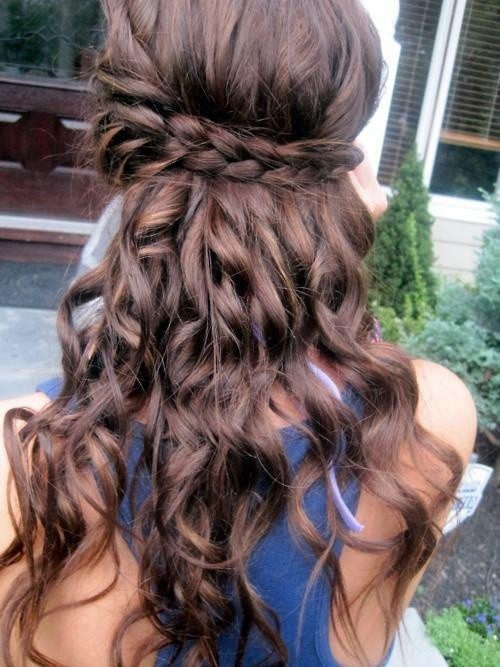 Easy Braided Half Up New Prom Hairstyles ...