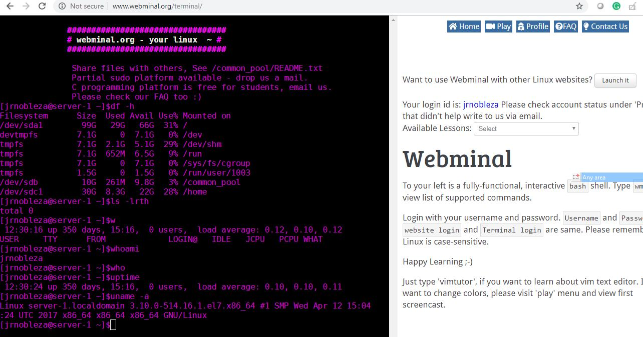 FREE Online Linux Terminals you didn't know exist