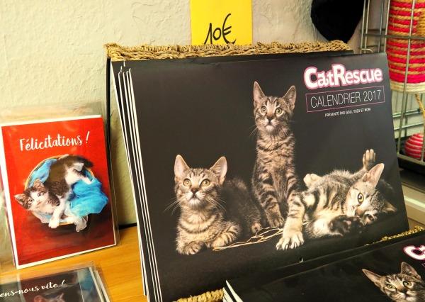 cat rescue calendar