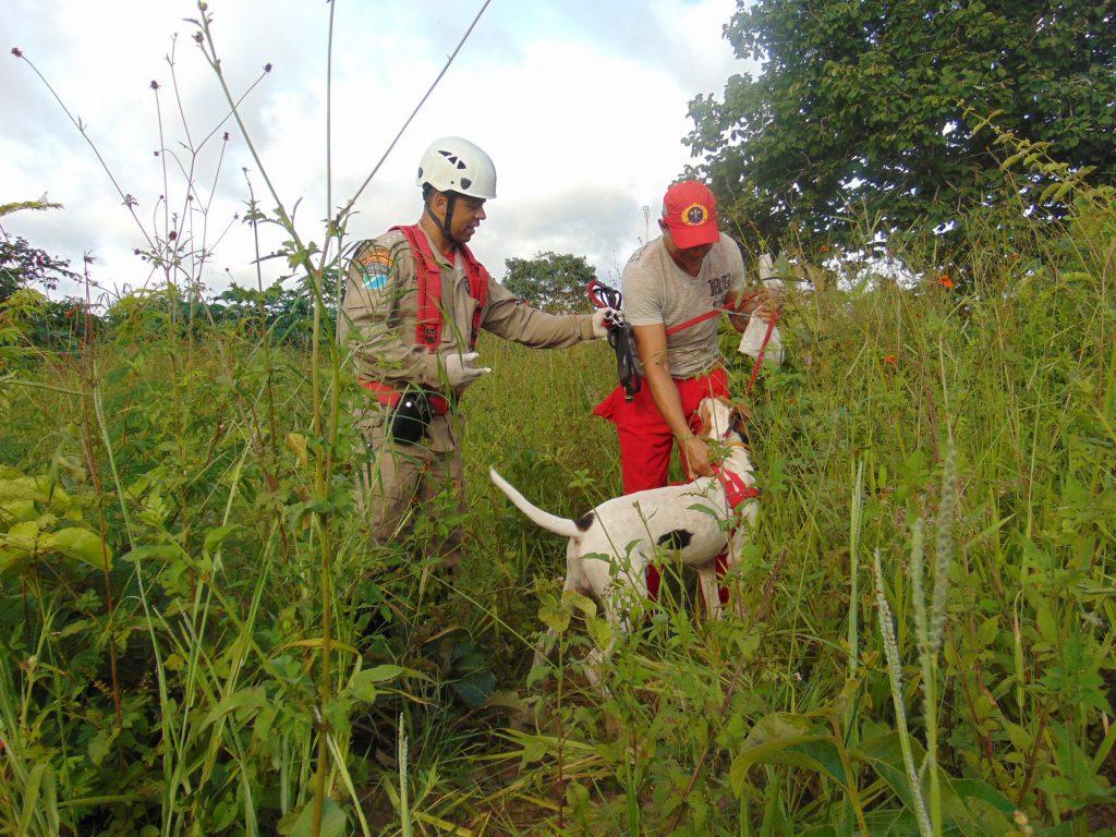 RIOVERDEMS  Coxim  Subgrupamento de Bombeiros Militar intensifica  treinamento com cães de resgate dfcec1c8644