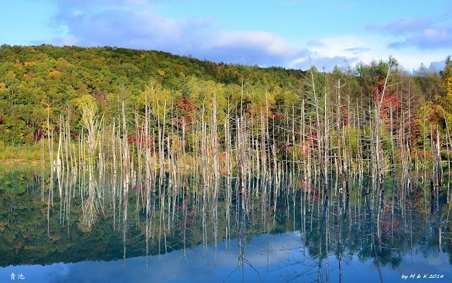 Day 9.6 青い池、白ひげの滝、上富良野駅