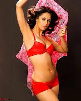 Mallika Sherawat ~  Exclusive 008.jpg