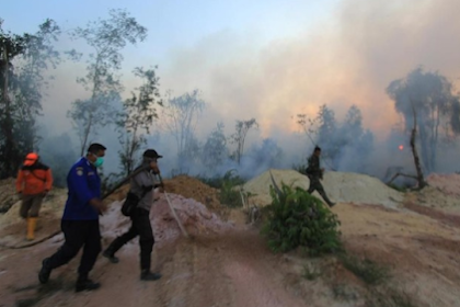 Kebakaran Hutan di Riau Meluas, Ribuan Masker Dibagikan ke Warga