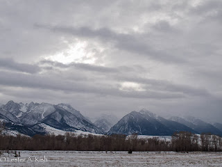 Steely morning sky over the Absarokas, DePuy Spring Creek, Montana