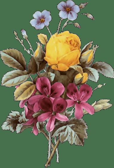 31 flores vintage para scrap flowers