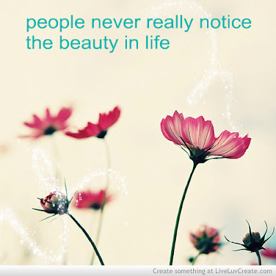 quotes about love:people never really notice the beauty in life.