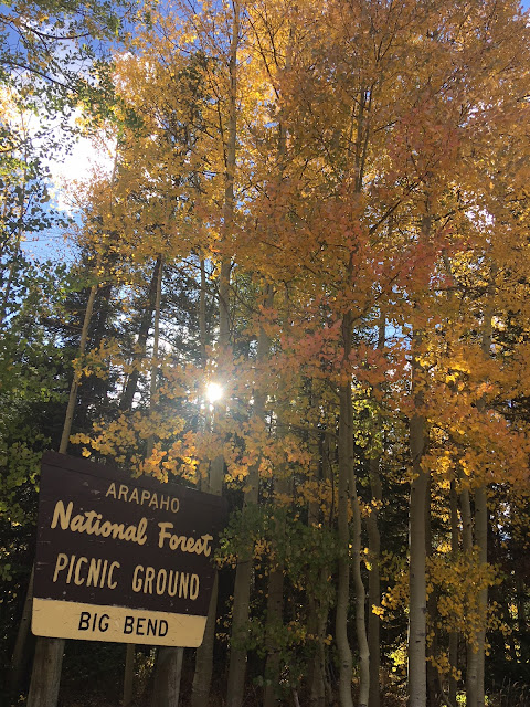 Sunlight streaming through gold and orange aspen leaves above Big Bend Arapaho Forest picnic area