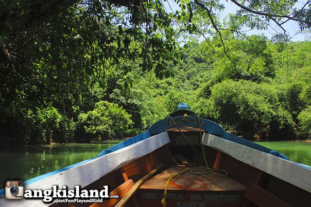 perahu di hutan