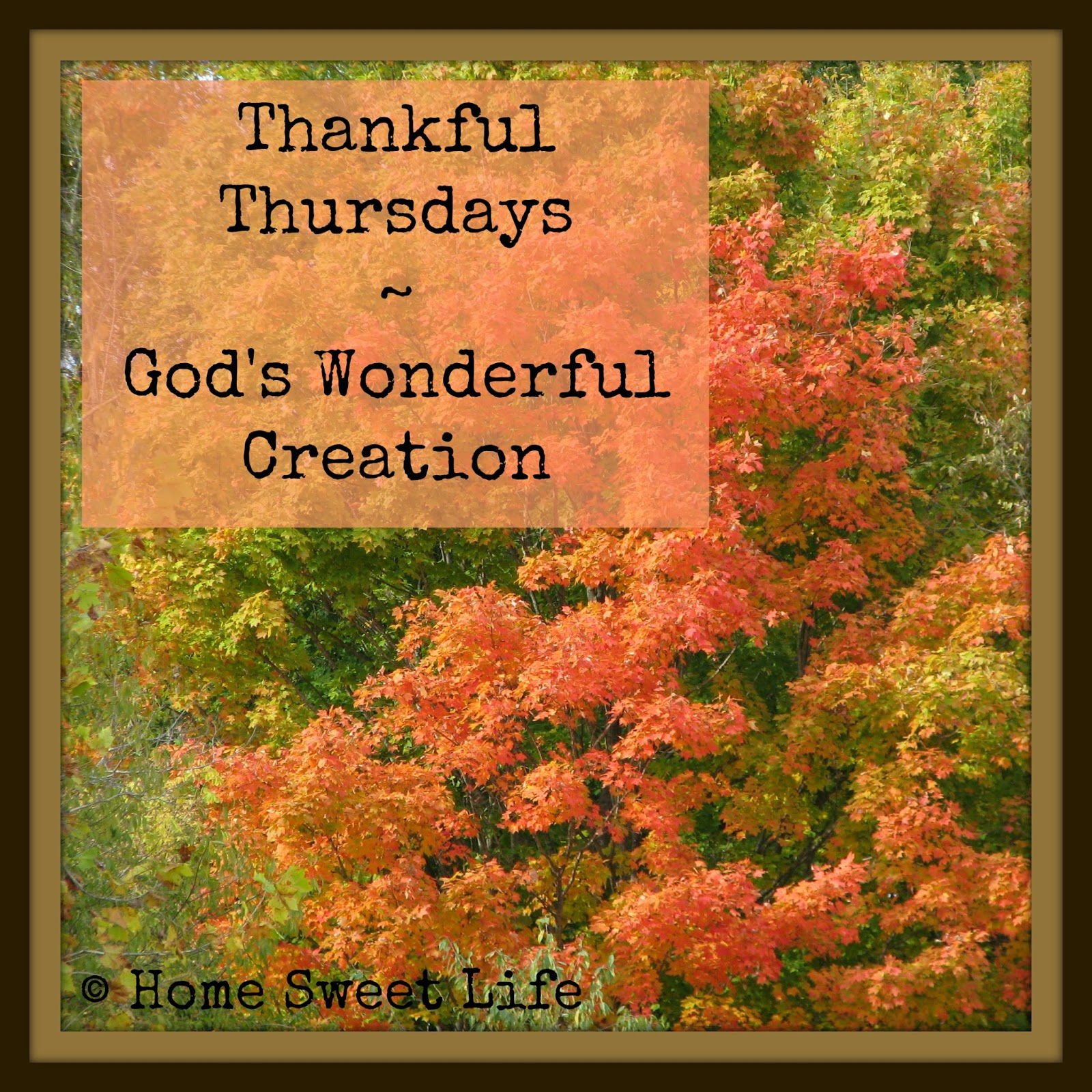 Thankfulness, creation, God's love