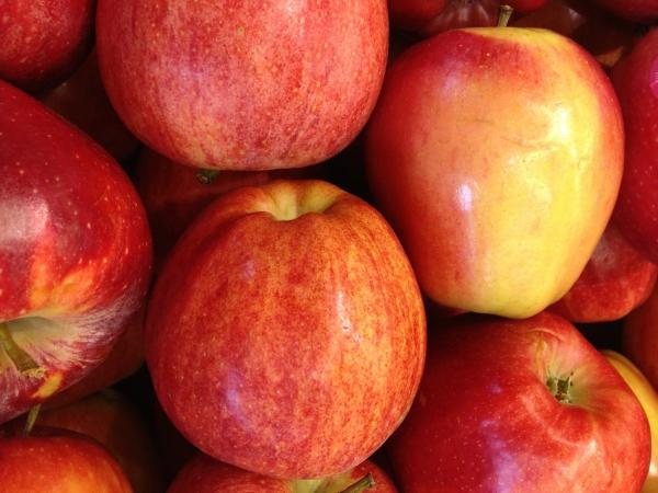 7 Vegan Apple Tree Recipes For Fall