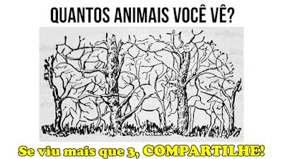 Teste de visão: Quantos animais você vê?