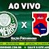 Jogo Palmeiras x Paraná Ao Vivo 29/07/2018