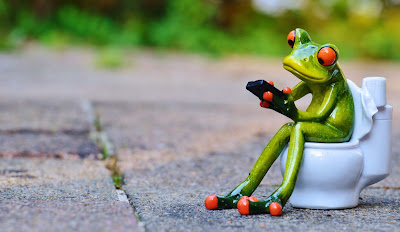 frog statue sitting on toilet with phone