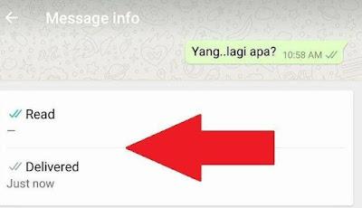 Ternyata Nggak Cuma Centang Biru, Ternyata Ini Juga Menandakan Bahwa Pesanmu di Whatsapp Udah Dibaca
