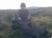 8pt Sika During Rut