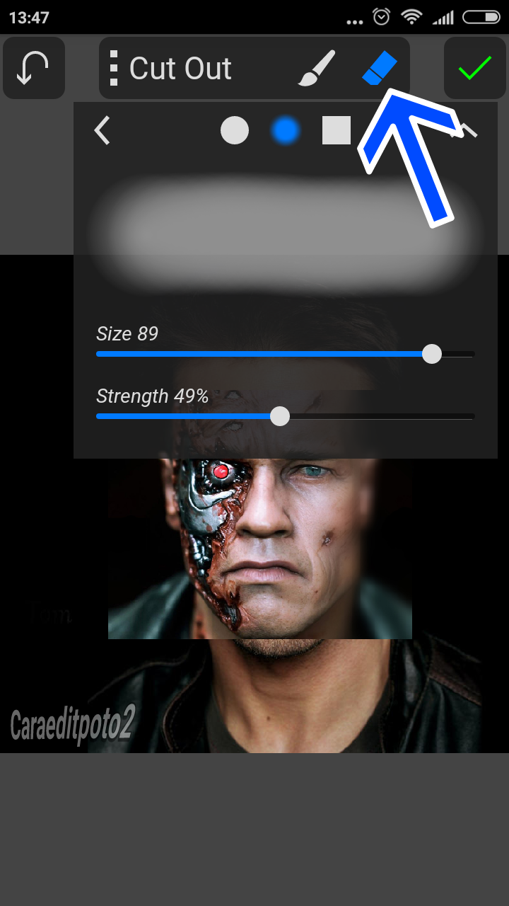 Edit Foto Face Terminator Picsay Pro - Android