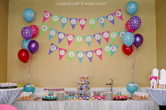 A With Lil Mama Stuart Colorful Owl 1st Birthday Party Decorations
