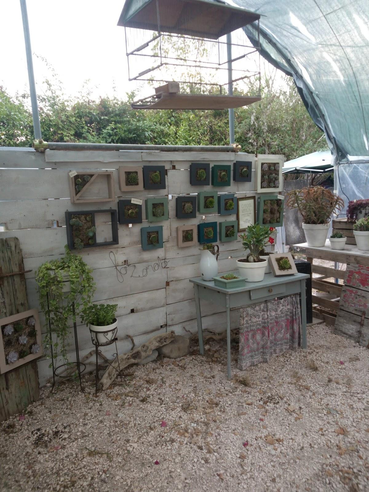 Il favoloso mondo di martolina - Mini serra da interno ...