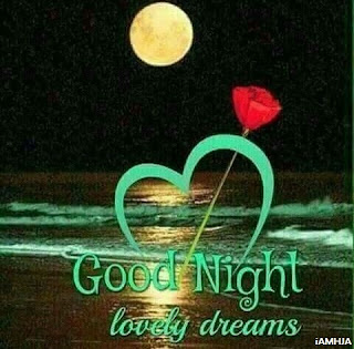 Good Night Lovely Dreams Best Night Wish Pics Download Hd Quality Night photo gallery download stock free collection