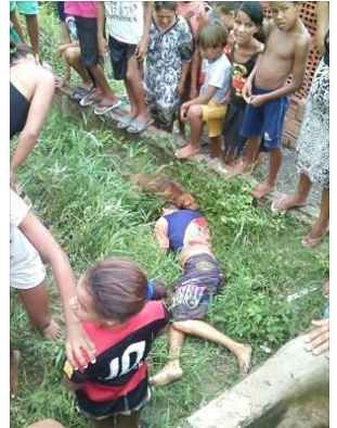 Alagoas: Cachorro deita junto ao corpo do dono assassinado  na cidade de São Luís do Quitunde