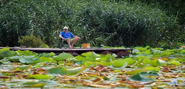 La pescuit pe lacul Snagov, fotografii, poze si descrieri