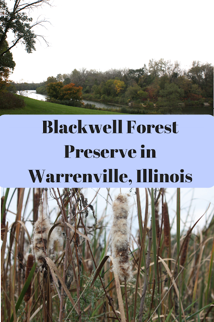 Exploring nature at Blackwell Forest Preserve in Warrenville, Illinois