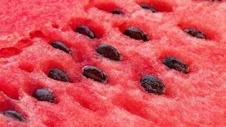 Γιατί πρέπει να τρώτε τα κουκούτσια από το καρπούζι