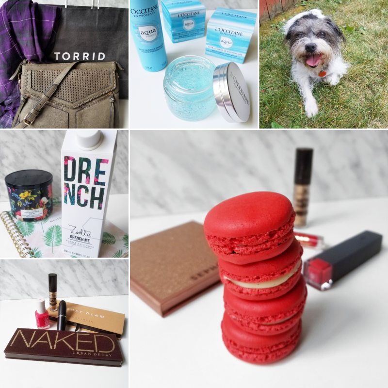 bbloggers, bblogger, bbloggerca, canadian beauty blogger, instagram, round up, instamonth, beauty, fashion, lifestyle, torrid, plaid blouse, crossbody bag, loccitane, l'occitane, aqua reotier, border terrier, jack russell terrier, macarons, zoella, drench me, bath soak, bubble bath, monthly favorites, urban decay, naked, anastasia beverly hills, soft glam, essence cosmetics
