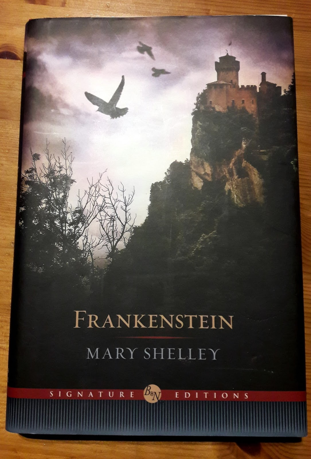 what makes frankenstein a gothic novel Thesis the romantic period the gothic novel scientific research of the time  and her own life, mary shelley's gothic novel, frankenstein, presents a clear  gothic literature gets its name from the gothic architecture that often makes up.