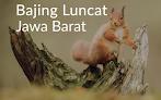 Lirik Lagu Bajing Luncat - Jawa Barat (Lyrics)