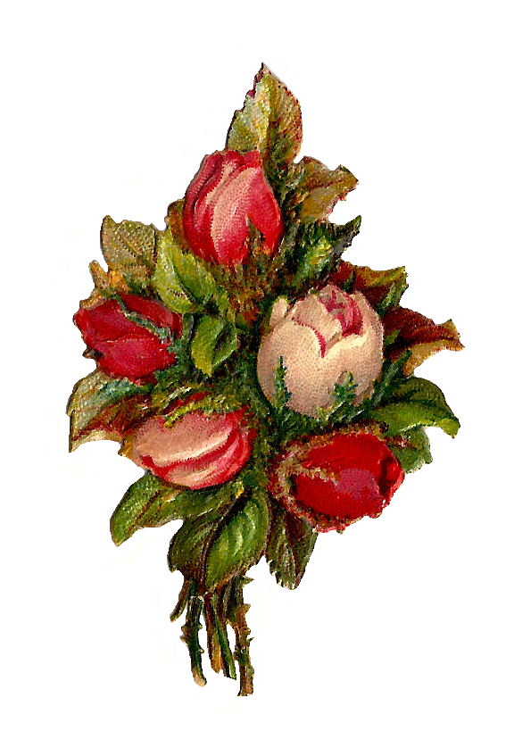 Antique Images: Free Flower Clip Art: Red and Pink Rose ...