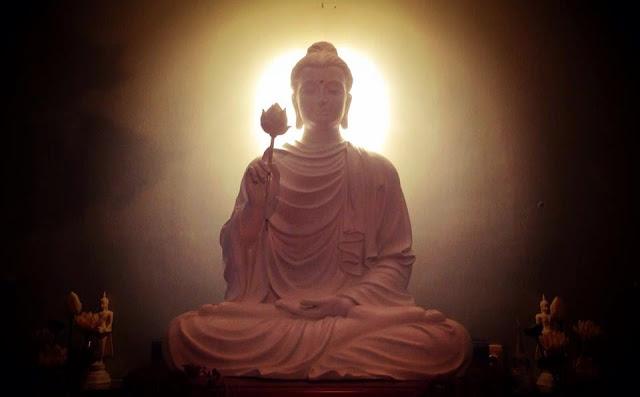 Đạo Phật Nguyên Thủy - Đường Xưa Mây Trắng - Chương 51: Kho tàng của cái thấy