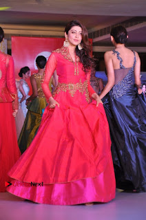 South Indian Celebrities Pos at Love For Handloom Collection Fashion Show  0127.jpg
