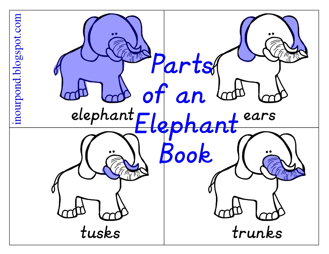 Parts Of An Elephant Booklet