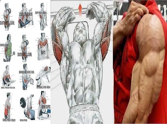 Best Triceps Workout At Home- To Have Smart And Strong Arms