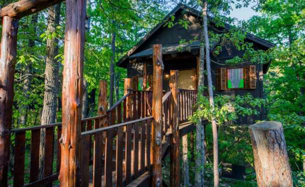 TREE HOUSE FOR A ROMANTIC EXPERIENCE